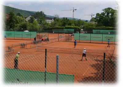 Tennis-Club-Schwarz-Gelb-Heidelberg-001