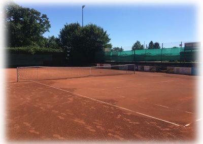 Tennis-Club-Schwarz-Gelb-Heidelberg-003