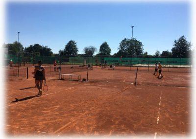 Tennis-Club-Schwarz-Gelb-Heidelberg-011