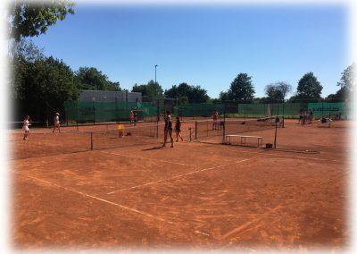 Tennis-Club-Schwarz-Gelb-Heidelberg-012
